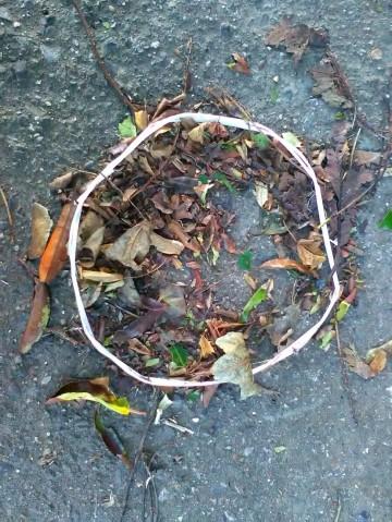 Plastic circle & leaves