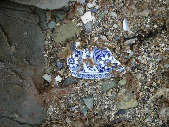 Flower Wars - piece of china on the beach